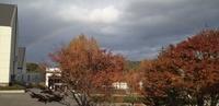 秋天的彩虹(别科教室的窗外)